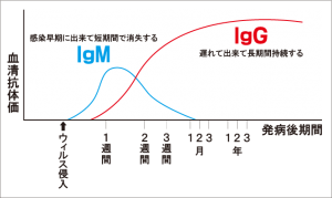 抗体検査キット グラフ